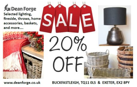 January Sale image 20% off with fireside and baskets